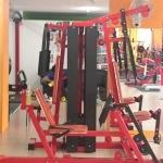 Multi position Pin Weigh Machine