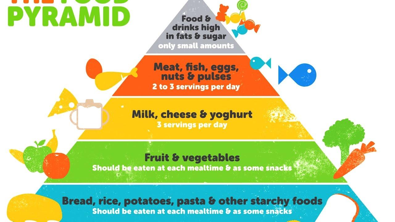 Healthy Food Pyramid Nutrition F